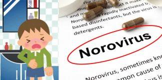 โนโรไวรัส